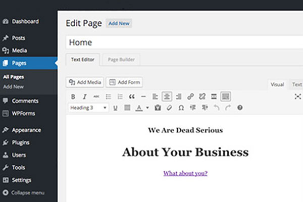 WordPress Editor with Gecko Builder